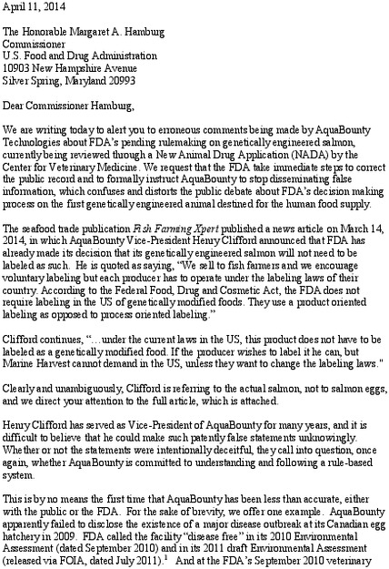 ge_salmon_letter_to_hamburg_about_clifford-1_cfs.pdf_600_.jpg