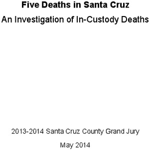 death_in_custody_report.pdf_600_.jpg