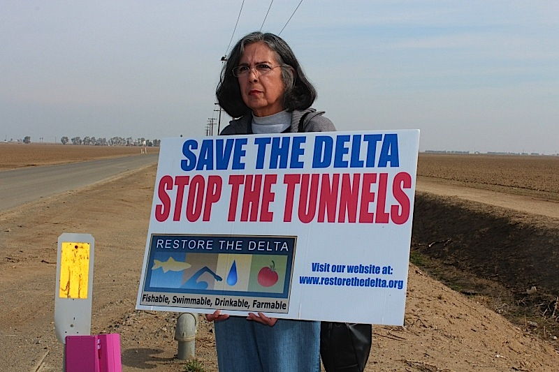 save_the_delta__stop_the_tunnels.jpg