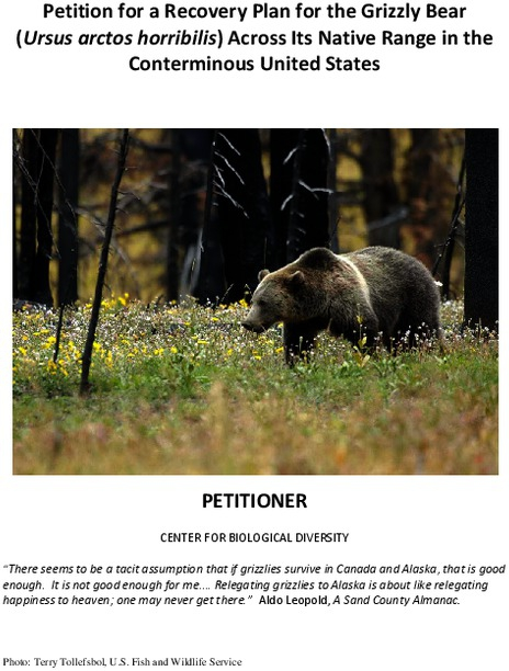 grizzly_recovery_plan_petition_.pdf_600_.jpg
