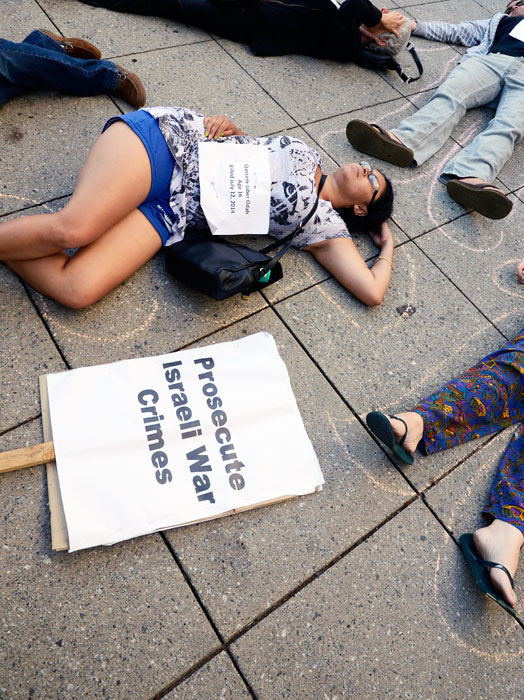 free-palestine-gaza-die-in-santa-cruz-august-4-2014-15.jpg