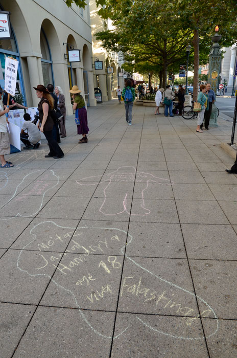 free-palestine-gaza-die-in-santa-cruz-august-4-2014-20.jpg