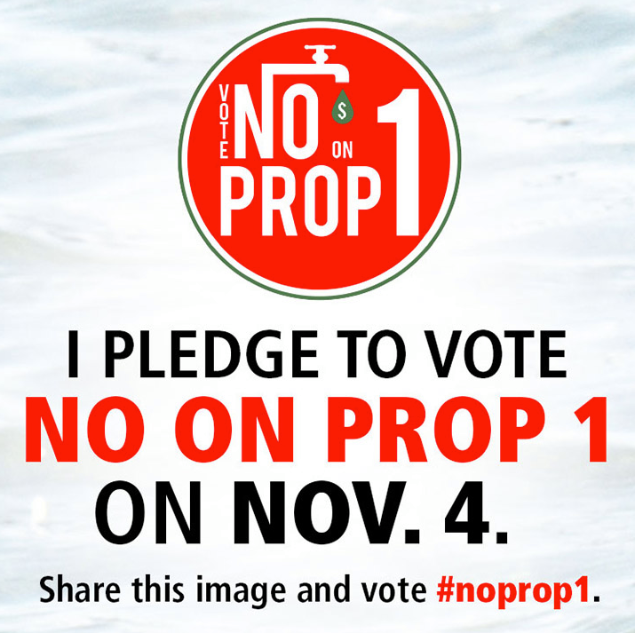 pledge_to_vote_no_on_prop._1_.png