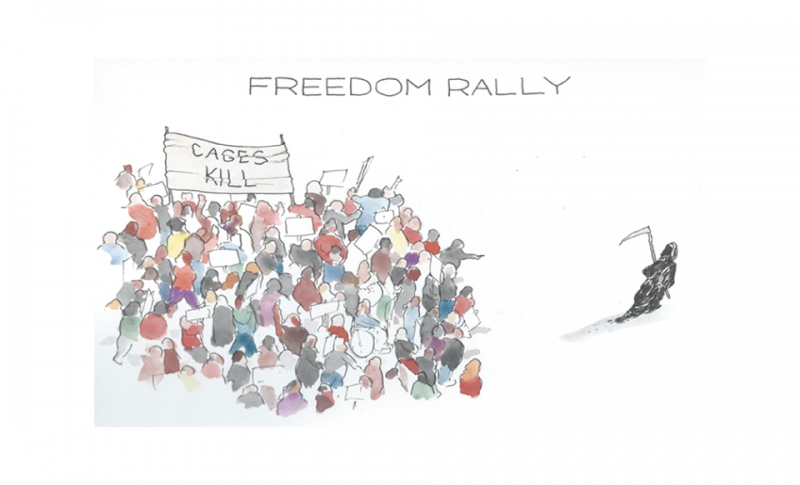 800_cages-kill-freedom-rally.jpg