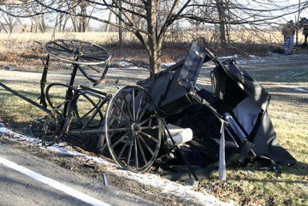 More Horses Die In Amish Country Indybay