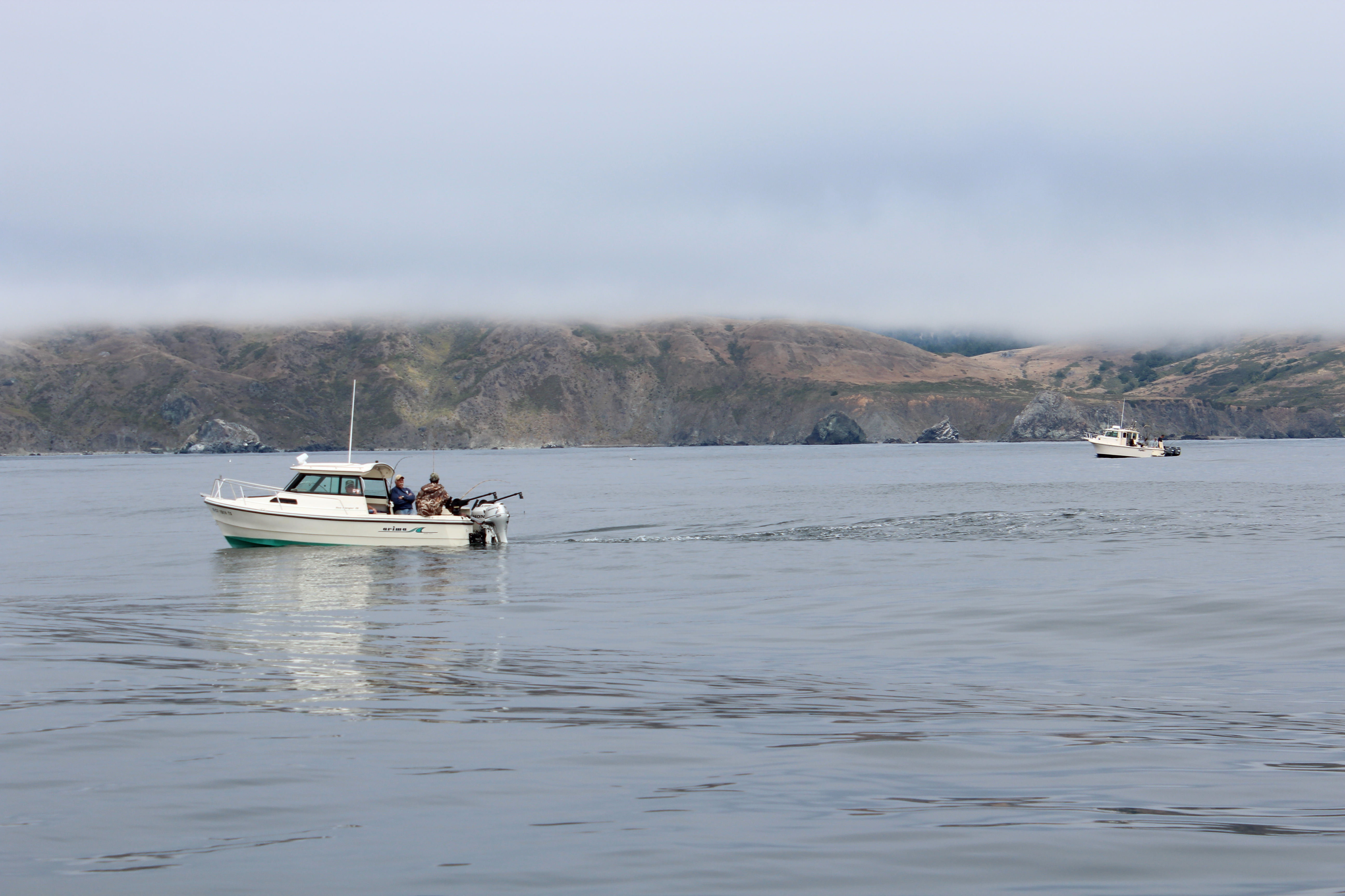 Ocean salmon season will open april 4 indybay for Bodega bay fishing charters