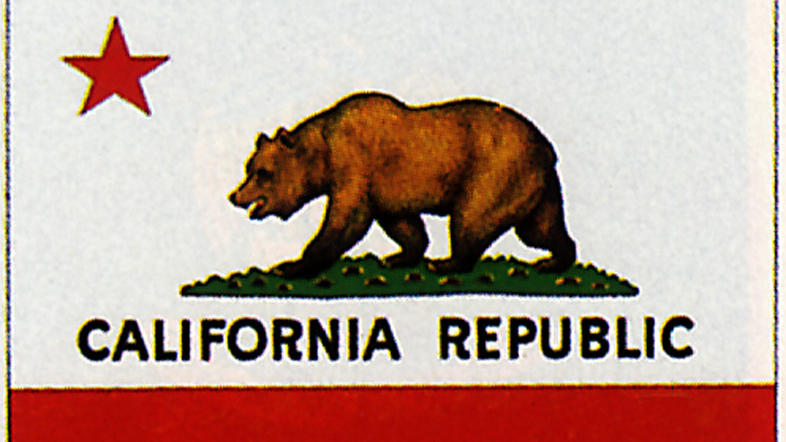 The Dark History Of The California Bear Flag An Interview