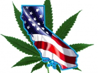 200_california-cannabis-coalition.jpg