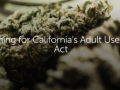 120_cannabis-california-auma.jpg