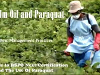 200_bmp_paraquat_used_for_20_months.jpg