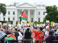 200_palestine-white-house.jpg