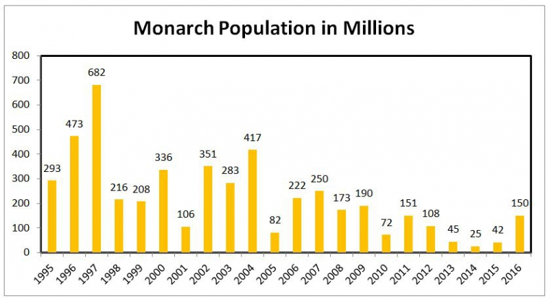 800_monarch_butterfly_population.jpg