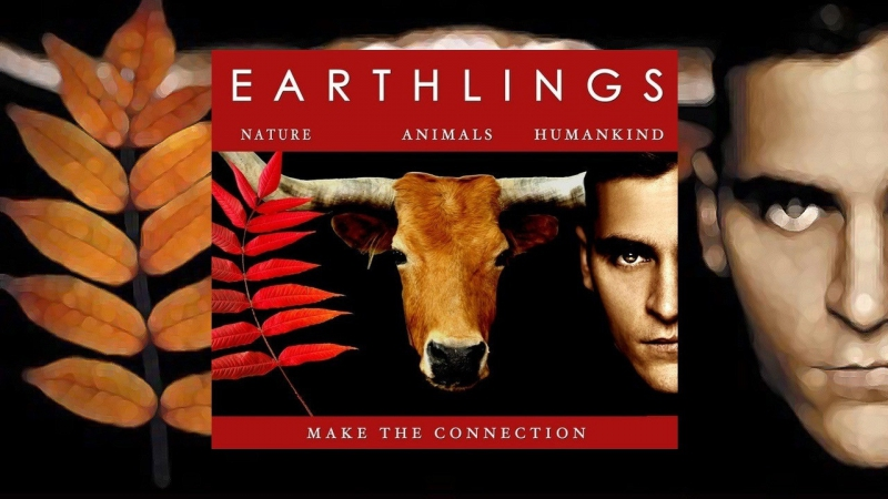 Documentary Film: Earthlings @ Main San Francisco Public Library, Koret Auditorium, Lower Level.  | San Francisco | California | United States