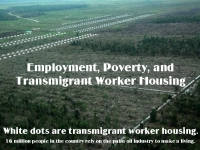 200_transmigrant_worker_housing_palm_oil_industry.jpg