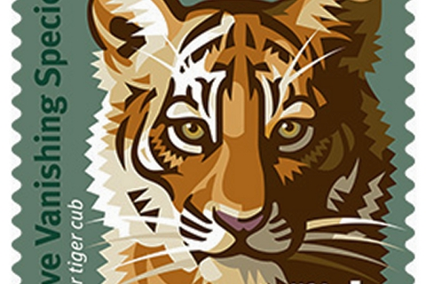 480_tiger_stamp_1.jpg original image (1200x1200)