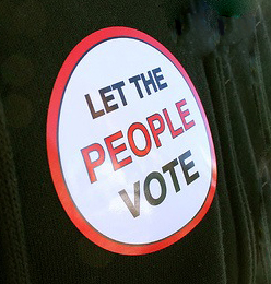 let-the-people-vote-sticker.jpg