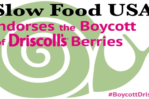 480_slow-food-usa-boycott-driscolls.jpg