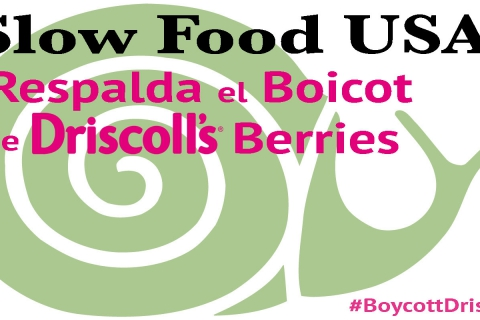 480_slow-food-usa-boicot-driscolls.jpg