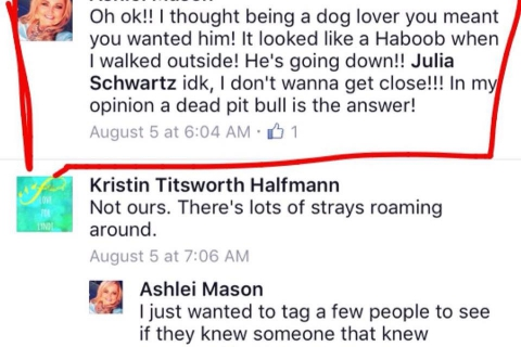 480_ashlei_mason_advocates_killing_dog.jpg