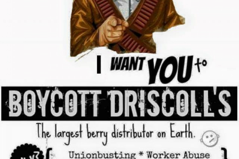480_i-want-you-to-boycott-driscolls.jpg