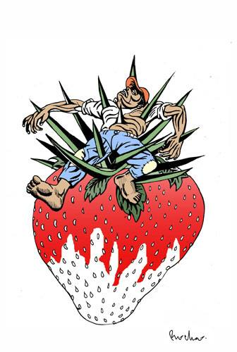 farmworker_on_strawberry_killed_graphic.jpg