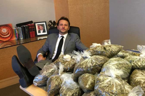 480_shapiro-with-cannabis.jpg