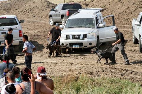 480_north_dakota_dog-attack__1__1.jpg