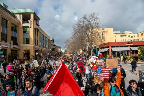 480_j20-inauguration-day-protest-santa-cruz-24_1.jpg