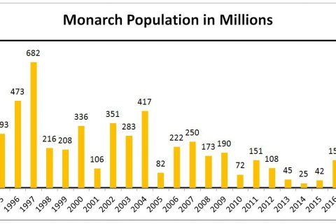 480_monarchpopulationgraph_center_for_biological_diversity_1.jpg