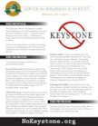 keystone_factsheet_print_and_web.pdf_140_.jpg