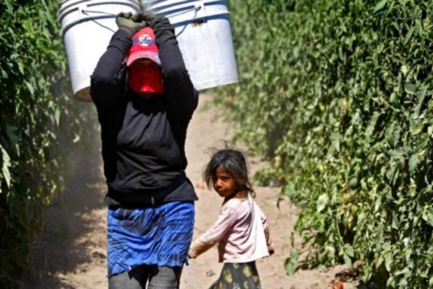 480_mexico_san_quinten_women_farmworker_with_child.jpg