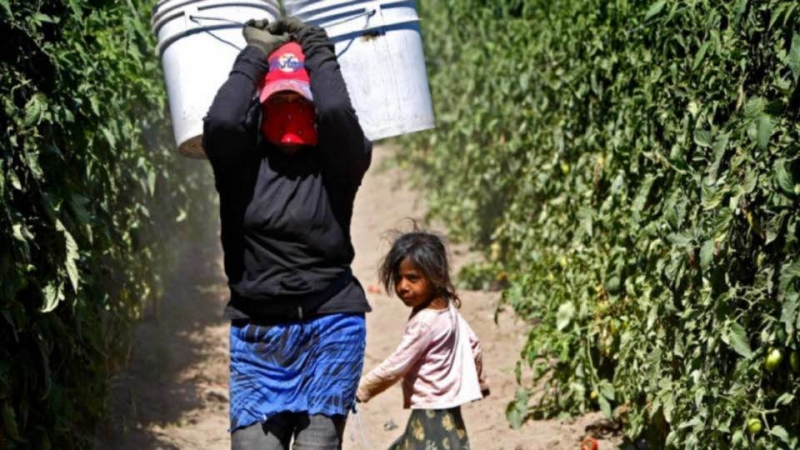 sm_mexico_san_quinten_women_farmworker_with_child.jpg