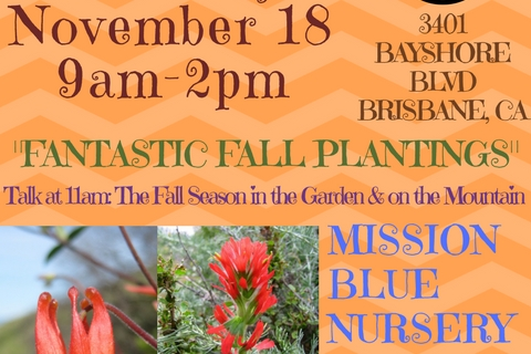 480_mbn_plant_sale_nov_18th_2017_flyer.jpg