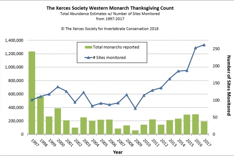480_xerces_society_western_monarch_thanksgiving_count.jpg