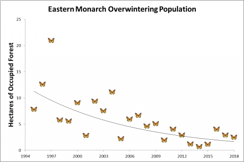 480_center_for_biological_diversity_2018_eastern_monarch_winter_count.jpg