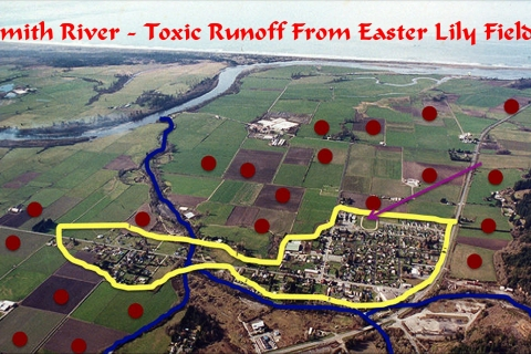 480_smith_river_toxic_fields_1.jpg