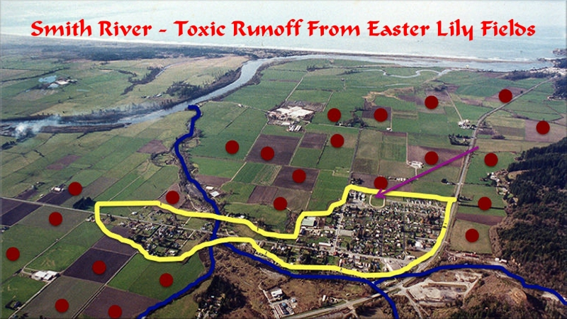 sm_smith_river_toxic_fields.jpg
