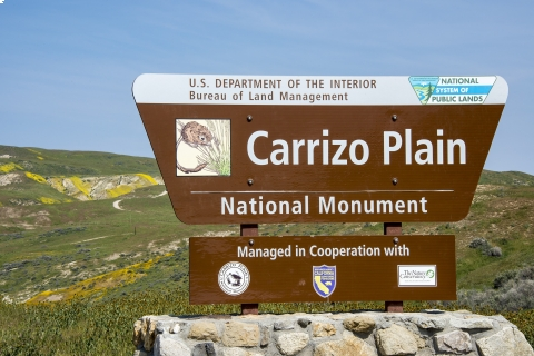 480_carrizo-plain-national-monument_ronald-l.-williams_1.jpg