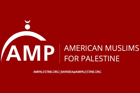 480_american-muslims-for-palestine.jpg