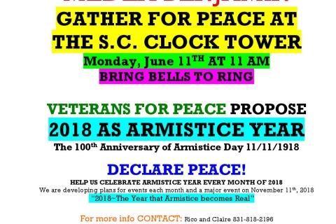 480_veterans_for_peace_armistice_day_100_santa_cruz_medea_benjamin_1.jpg