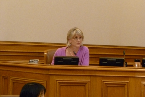 480_callahan_micki_ccsf_hr_director_at_hearing.jpg