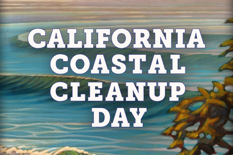 480_costal_cleanup_day_1.jpg