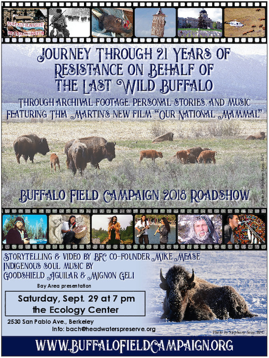Buffalo Field Campaign Roadshow @ Ecology Center | Berkeley | California | United States
