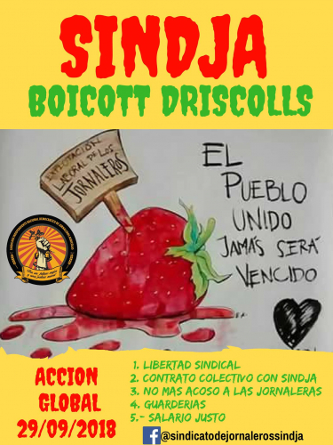 sm_boycott-driscolls-global-action-sep-29-2018.jpg
