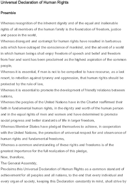 universal_declaration_of_human_rights.pdf_600_.jpg