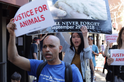 480_santarosa-march30-2019c_dxe.jpeg