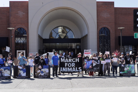480_santarosa-march30-2019f_dxe.jpeg