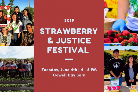 480_strawberry_and_justice_festival_cowell_hay_barn_uc_santa_cruz_1.jpg