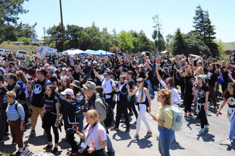 480_dxe-petaluma_june03-2019e_flowers-raised-outside-farm.jpeg