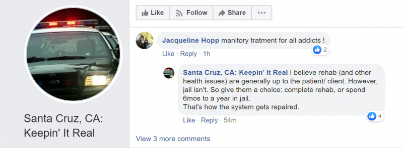 sm_jacqueline-hopp-big-joe-netro-77-santa-cruz-ca-keepin-it-real-manditory-jail-rehab.jpg